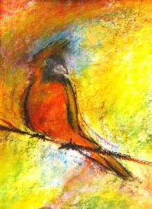 Cardinal for cubby