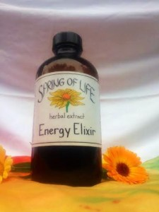 Energy Elixer Springs of Life 2014